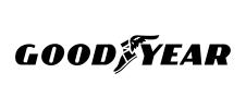 GOOD YEAR LOGO-