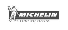 MITCHELIN LOGO-